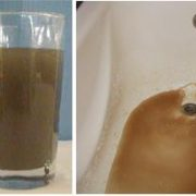 Excessive sediment in water